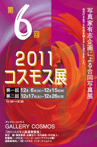 2011cosmocten-DM.jpg